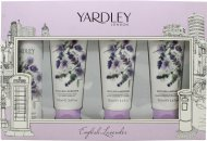 Yardley English Lavender Set regalo 75ml Deodorante Spray + 100ml Bagnodoccia + 100ml Crema Mani + 100ml Bagnodoccia